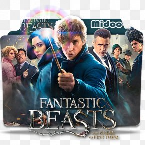 Fantastic Beasts - Fantastic Beasts And Where To Find Them Katherine Waterston Newt Scamander Porpentina Goldstein Jacob Kowalski PNG