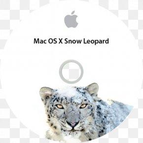 Leopard - Mac OS X Snow Leopard Felidae Cheetah PNG