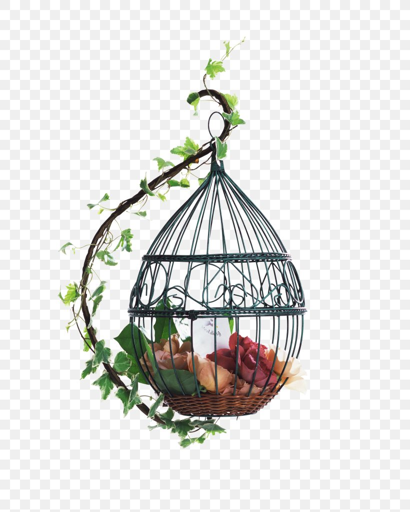 Samsung Galaxy S6 IPhone 8 Samsung Galaxy Note 3 Samsung Galaxy S5 Wallpaper, PNG, 3280x4100px, Bird, Android, Birdcage, Branch, Cage Download Free