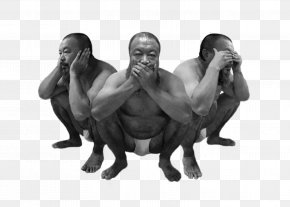 Wise Man - Analects Three Wise Monkeys Primate Ape Gorilla PNG