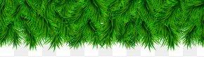 Pine Border Decoration Clip Art - Download.com Microsoft Windows CCleaner Software PNG
