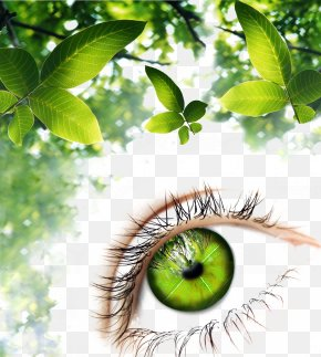 Green Leaf Background Eye Pattern - Human Eye Green Illustration PNG