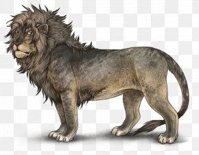 Lion - Lionhead Rabbit Hyena Cougar Siamese Cat PNG
