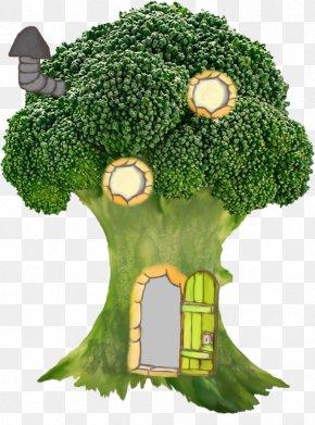 Broccoli - Cream Of Broccoli Soup Vegetarian Cuisine Vegetable Cauliflower PNG