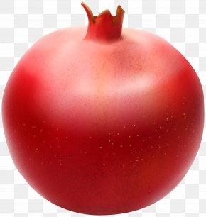 Pomegranate Transparent Clip Art Image - Pomegranate Plum Tomato Fruit Clip Art PNG
