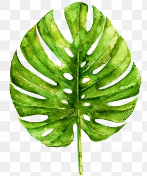 Leaf Watercolor - Work Of Art Watercolor Painting Printmaking Printing PNG