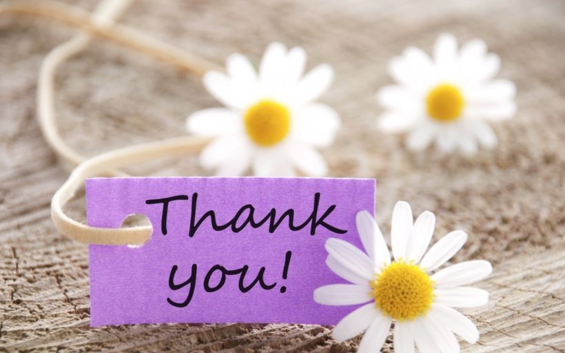 Desktop Wallpaper Photography Gratitude Png 1531x957px Photography Campaign Display Resolution Egg Feeling Download Free