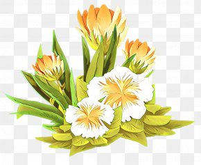 Tulip Gladiolus - Bouquet Of Flowers Drawing PNG