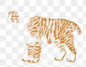 Tiger - Tiger Lion Felidae Zebra Big Cat PNG