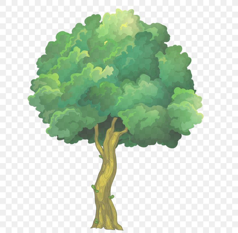 Green Tree Plant Leaf Watercolor Paint, PNG, 654x800px, Green, Grass, Leaf, Leaf Vegetable, Plant Download Free