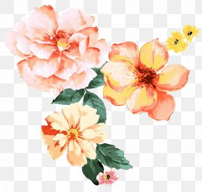 Beautiful Watercolor Flower Pattern - Flower Illustration PNG