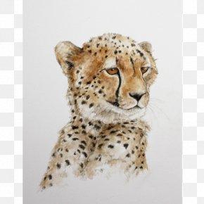 Cheetah - Cheetah Leopard African Wild Dog Cat Lion PNG