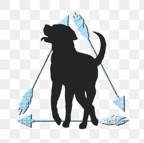 Journey - Cat Dog Pet Mammal Leash PNG