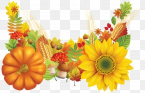 Fall Leaves Decoration Image - Thanksgiving Wish Greeting Card E-card PNG