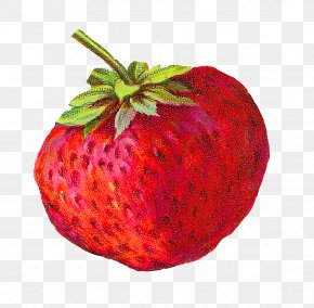 Strawberry - Strawberry Food Fruit PNG