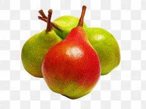 Fruit Tree Flower - Fruit Tree PNG