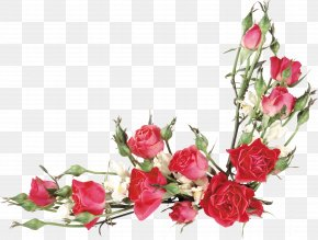 Floral Watercolor Flowers Line Drawing Material - Rose Flower Bouquet Clip Art PNG