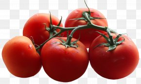 Tomatoes Branch Picture - Cherry Tomato Branch Shoot Pruning Leaf PNG