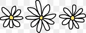 Drawing Flower - Flower Common Daisy Clip Art PNG