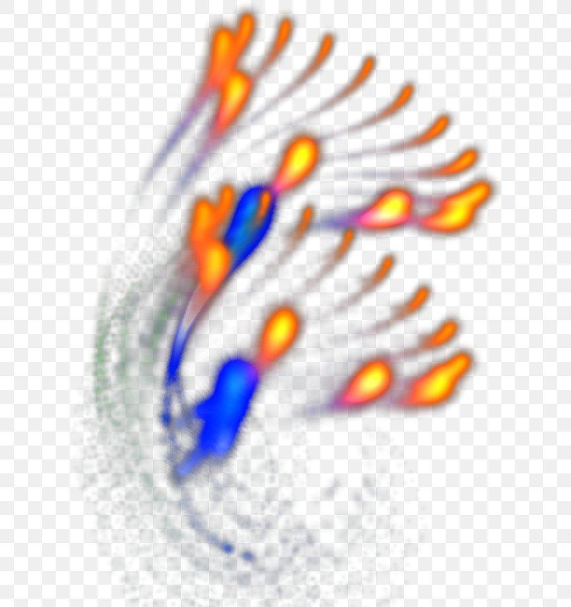Light Fireworks, PNG, 628x872px, Light, Festival, Fire, Fireworks, Illustration Download Free