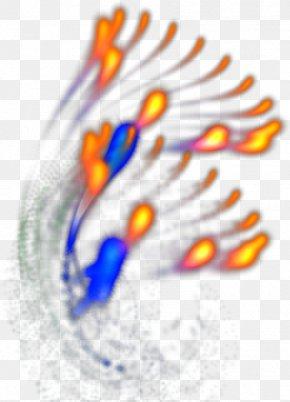 Effect Element - Light Fireworks PNG