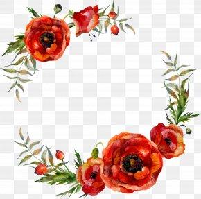 Vector Watercolor Flower Leaf Decoration - Poppy Flowers Illustration PNG