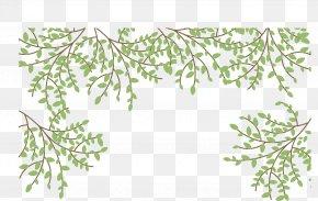 Vector Plant Borders - Cage Euclidean Vector PNG