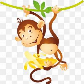 Monkey - Chimpanzee Monkey Ape Banana Photography PNG