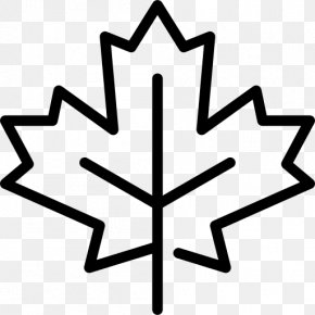 Canada Day Maple Leaf Happy - Maple Leaf Flag Of Canada Vector Graphics PNG