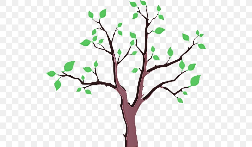 Tree Branch Plant Green Leaf, PNG, 521x480px, Tree, Branch, Flower, Green, Leaf Download Free