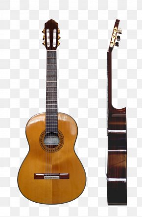 Acoustic Guitar - Classical Guitar Musical Instruments Steel-string Acoustic Guitar PNG