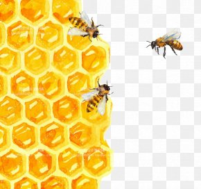 Bee - Bee Honeycomb Watercolor Painting Illustration PNG