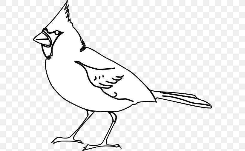 STL #CARDINALS #COLORINGSHEET | Baseball coloring pages, Cardinals ... | 506x820