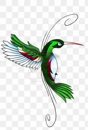 Hummingbird Tattoos Download - Hummingbird Feather Wing Beak Illustration PNG