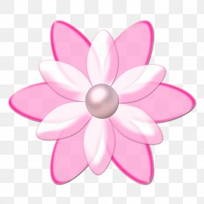 Flor - Flower Drawing Animation PNG