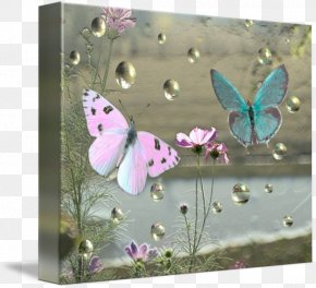 Glossy Butterflys - Picture Frames Gallery Wrap Canvas Art Printmaking PNG