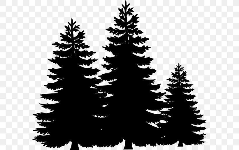 Pine Tree Fir Clip Art, PNG, 600x517px, Pine, Black And ... (820 x 517 Pixel)