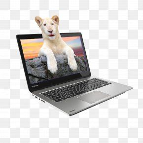 Lion Electronics Notebooks In Kind - Laptop Intel Toshiba Satellite Device Driver PNG
