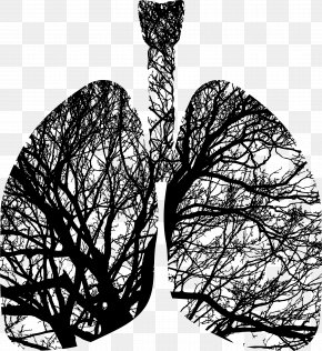 Lungs - Tree Silhouette Lung Breathing PNG