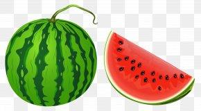 Watermelon Vector Clipart Image - Watermelon Fruit Clip Art PNG