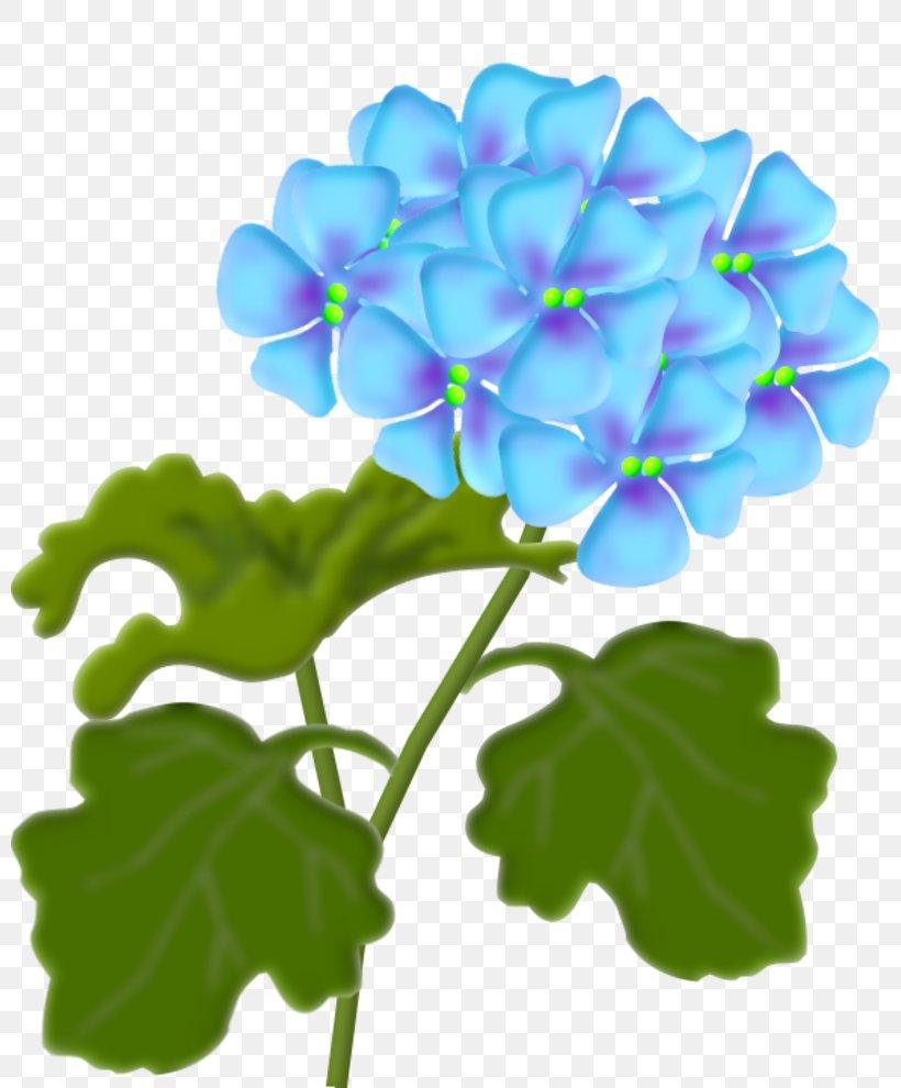 Flower Lantana Camara Clip Art, PNG, 800x990px, Flower, Art, Bulletin Board, Drawing, Floral Design Download Free