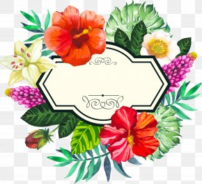 Hand Painted Watercolor Tropical Borders - Flower Picture Frame Clip Art PNG