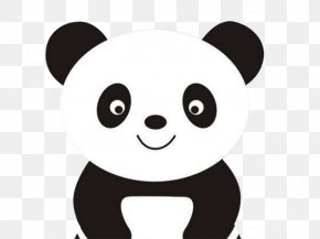 Cartoon Panda - Giant Panda Coloring Book Cuteness Bear PNG