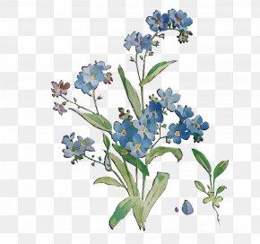 Scorpion Grasses Bluebonnet Cut Flowers PNG