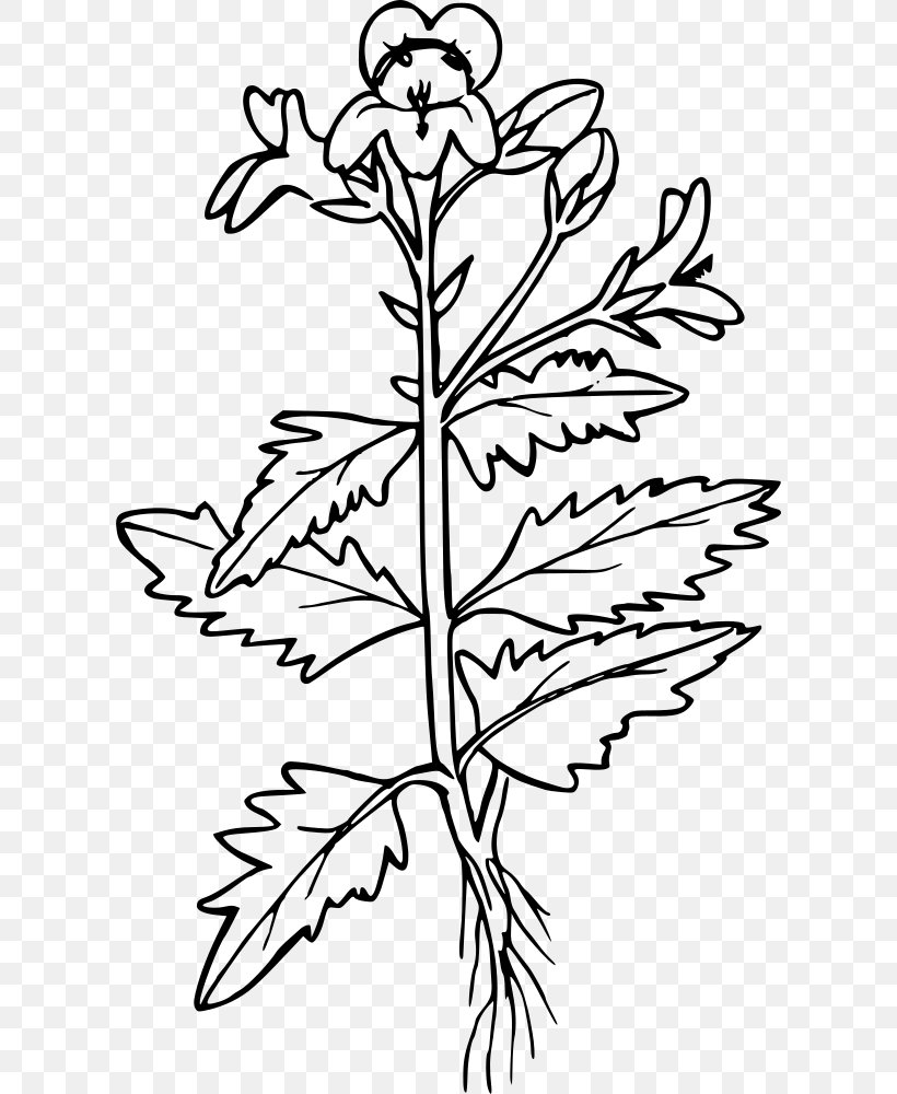 Gardening Coloring Pages - Best Coloring Pages For Kids | 1000x820