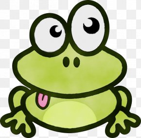 Head Yellow - Green Frog True Frog Toad Facial Expression PNG
