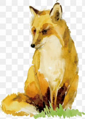 Watercolor Fox Design - Watercolor Painting Paper Animal Drawing PNG