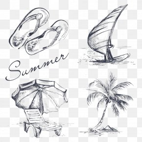 Vector Sea Tree - Drawing Summer Illustration PNG