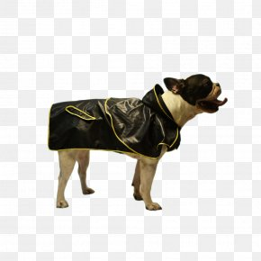 A Dog With A Gold Ingot - Raincoat Dog Breed T-shirt Hoodie Clothing PNG