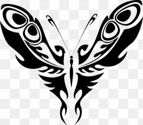 Line Art - Butterfly Line Art Clip Art PNG